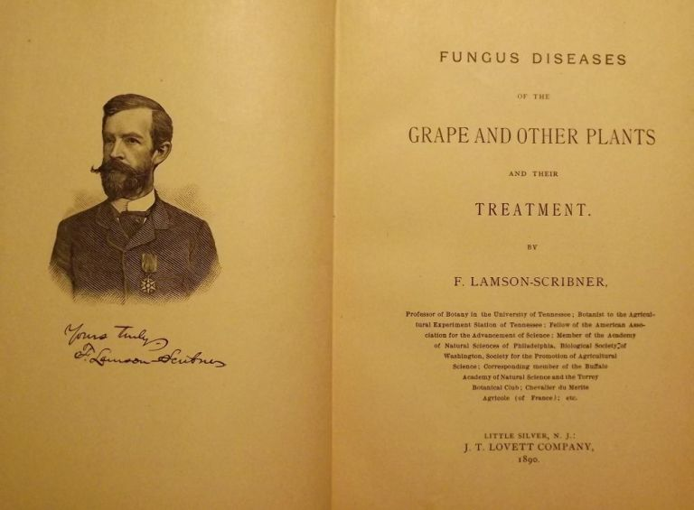 FUNGUS DISEASES OF THE GRAPE AND OTHER PLANTS. F. LAMSON-SCRIBNER.