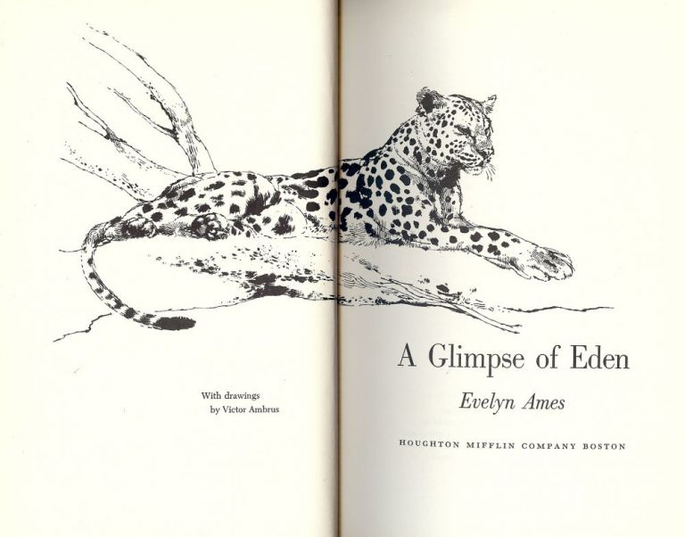 A GLIMPSE OF EDEN. Evelyn AMES.