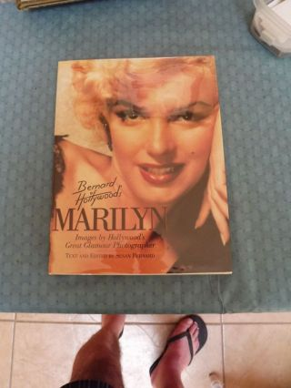 BERNARD OF HOLLYWOOD'S MARILYN. Susan BERNARD