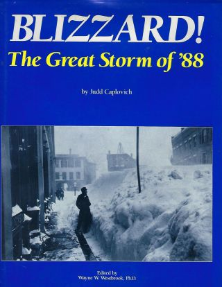 BLIZZARD: THE GREAT STORM OF '88. Judd CAPLOVICH